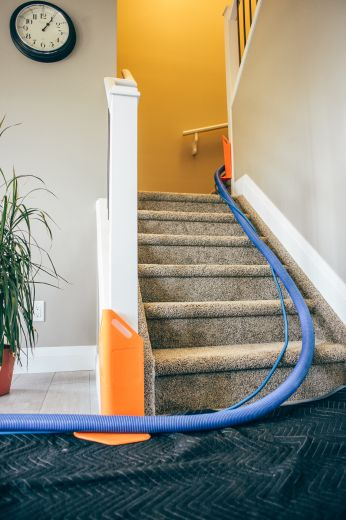 Carpet Cleaning Process Canada Clean Home
